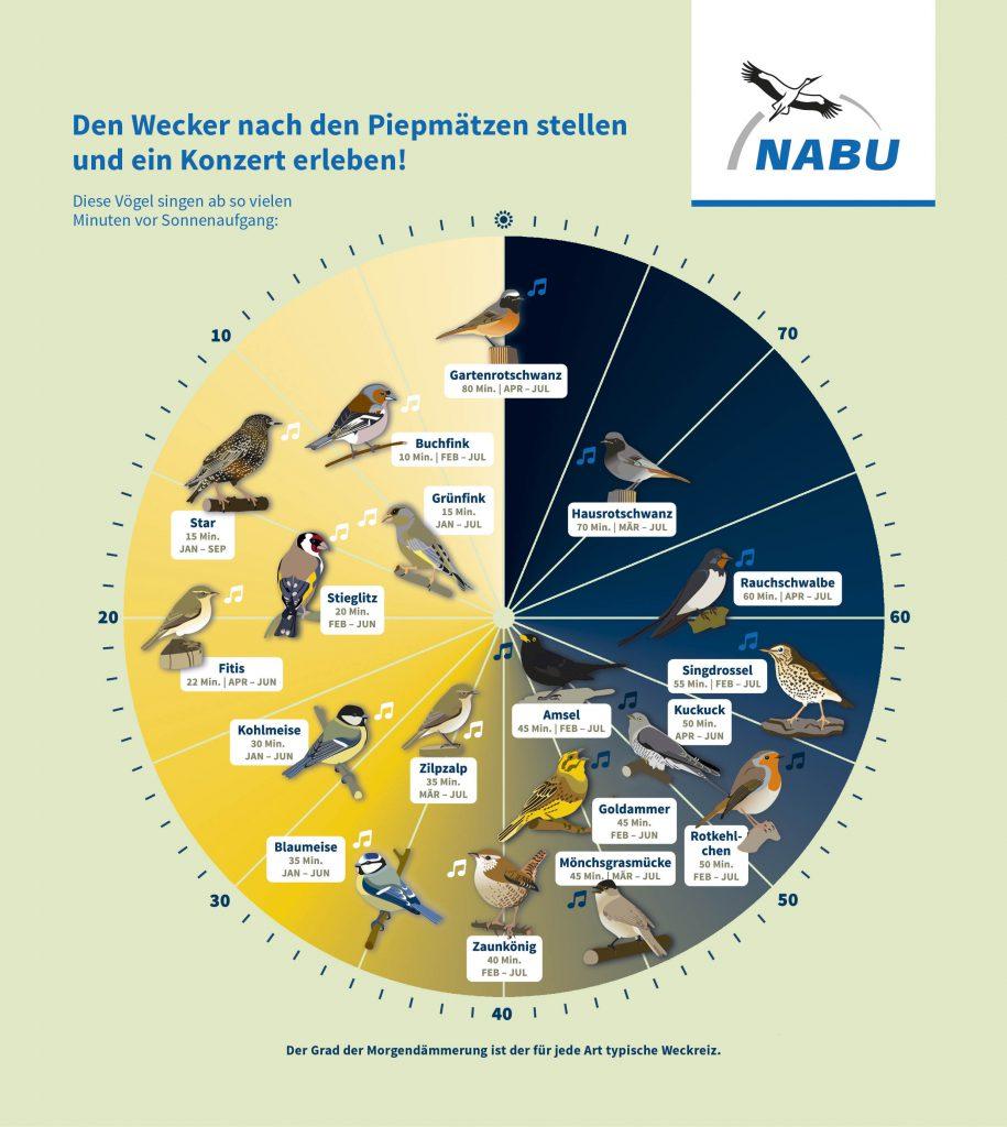 NABU Vogeluhr